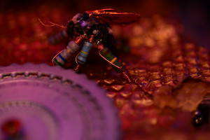cyborg_hive
